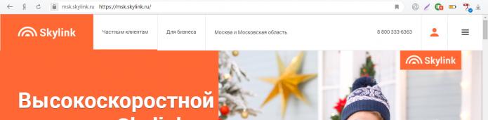 Официальный сайт Skylink