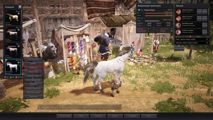 Как начать разведение лошадей