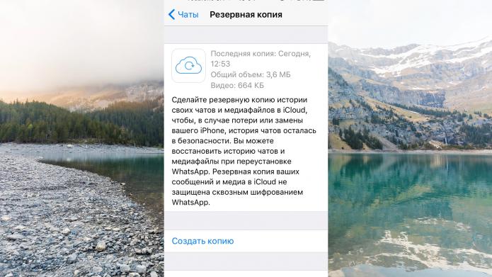Информация о наличии резервных копий чатов WhatsApp во вкладке «Копирование» на iOS