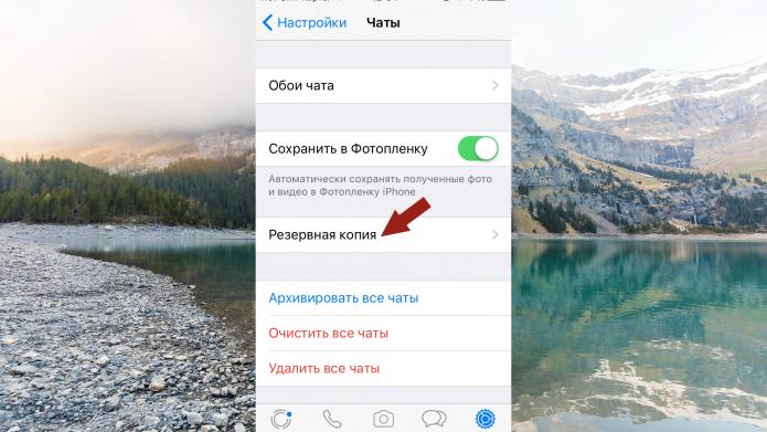 Пункт «Резервная копия» в меню настроек WhatsApp на iOS