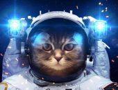 Вселенские завоеватели: топ лучших игр про космос