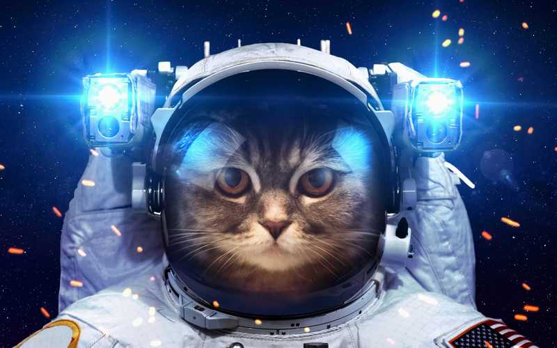 Кто покорит Вселенную: топ лучших игр про космос на ПК