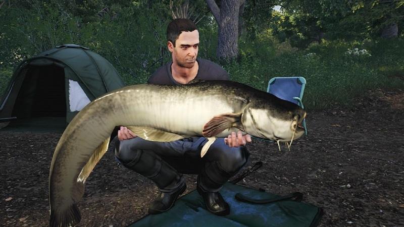 11 игр на Андроид, которые наглядно покажут все прелести рыбалки