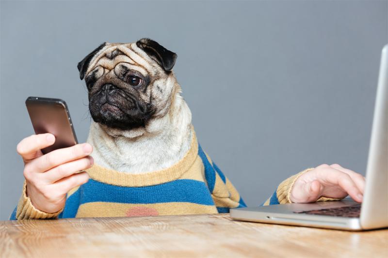 Горячая подборка игр на 9 вечных тем (для Андроид и не только)