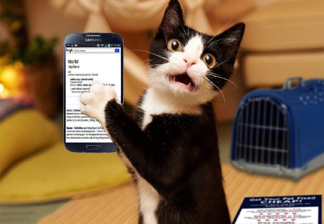 Тест: что означает ваша манера держать телефон