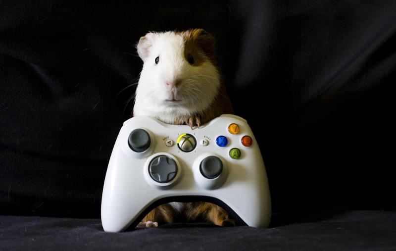 Игры Xbox Live Gold в сентябре — чему будут завидовать все владельцы «плоек»